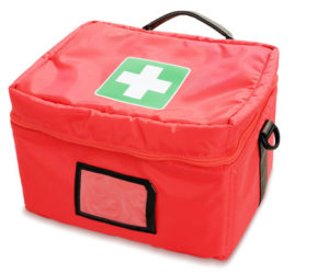 Ten Items for Your Pet First Aid Kit